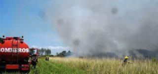 Varias dotaciones de Bomberos Voluntarios trabajaron arduamente para controlar un extenso incendio desatado en un campo ubicado a espaldas de barrio Amelong y que estuvo a punto de alcanzar las viviendas. Vecinos se quejaron por la repetición de estos hechos durante los veranos.
